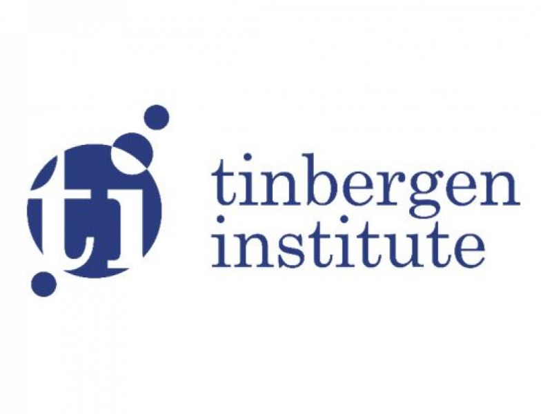 Tinbergen Institute Summer School Program