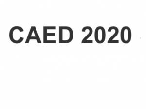 CAED 2020 Seminar: Fabiano Schivardi (LUISS University, Italy)